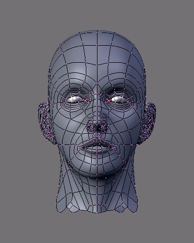 A 3D mesh (; Creative Commons Attribution-Share Alike 3.0 Unported license)